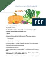 D.S.2 (1).docx