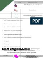 organelos-células.doc
