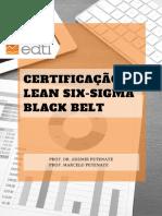 01 - Apostila teórica Black Belt.pdf