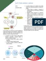 Ciclo Celular y Cancer