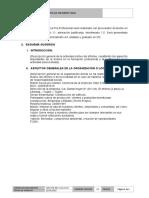 Estructura de Informe Final v2 r