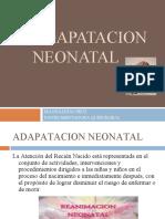 ADAPATACION NEONATAL