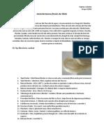 Caracterizarea firului de sisal.docx