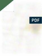 Scanned burnout thing.pdf