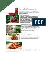 raices comestibles.docx