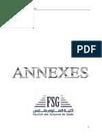 annexe-maintenance.pdf