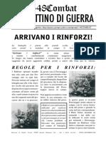 rinforzi.pdf