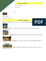 resumo de história.pdf