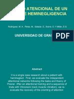 poster_4_heminegligencia (2).ppt