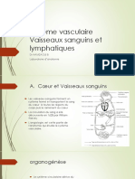 4-systeme vasculaire