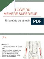 ulna et les os de la main.pdf · version 1