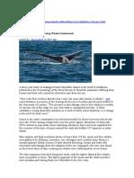 baleias_ozono