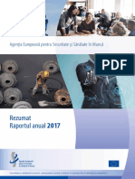 Annual 20report 202017 20summary RO