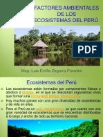FACTORES AMBIENTALES DE LOS ECOSISTEMAS DEL PERÚ