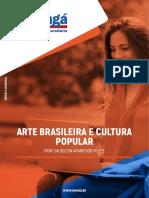 ARTE BRASILEIRA E CULTURA POPULAR