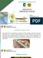 Riesgos sector avicola1