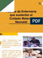 SEMANA 4 -Teorias de Enfermeria que Sustenta el Cuidado Neonatal.pdf