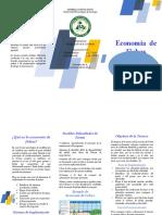 Economía de Fichas (Brochure)
