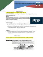 ANEXO  SEMANA 4   3 AL 6 DE NOVIEMBE 2020