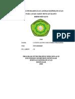 LP Anak Hidrosefalus.doc