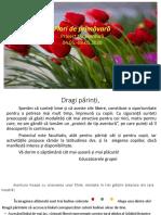 flori_de_primavara_proiect_tip_aventura
