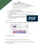Ficha - SN revisão