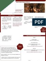 Plano de aula - Diáspora Africana