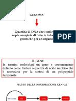 7-FLUSSO DELLA INFORMAZIONE GENICA