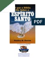 evangélico - stanley m horton - o que a bíblia diz sobre o Espírito Santo