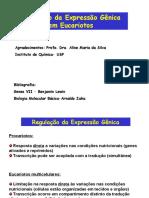 aula9_Expressao_Genica_Eucariotos (2).ppt