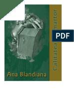 Blandiana, Ana - Calitatea de martor