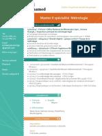 CV M RIH Ing Métrologie.pdf