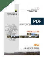 anello caucaso.pdf
