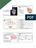 2 Sistema Cardiovascular