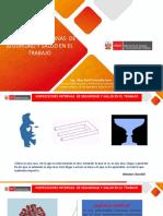 INSPECCIONES_SST_2020.pdf
