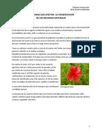 Problemas ambientales recursos.pdf