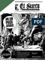 El surco N°29 (Sep-2011).pdf