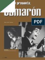 2 Biografía de Camarón