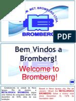 Apresentação Bromberg 2020-1