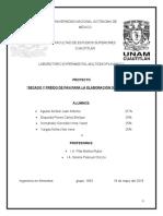 informe-final LEM 5