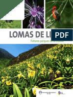 Lomas-de-Lima_compressed