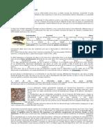enfermedades en peces