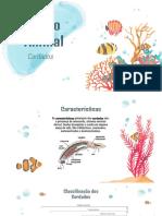 Trabalho de Biologia.pdf