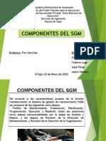 COMPONENTES DEL SGM