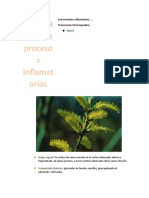 FITOTERAPIA de procesos inflamatorios