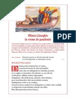 Liturghie_in_vreme_de_pandemie
