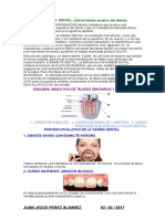 caries.docx