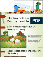 The Importance Of Good Poultry Feed In India