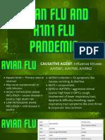 Avian Flu and H1N1