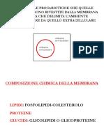 2-LE MEMBRANE BIOLOGICHE.pdf